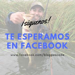 Blog pesca | pecade.es